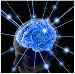 Hidup Tenang dengan Otak Cerah